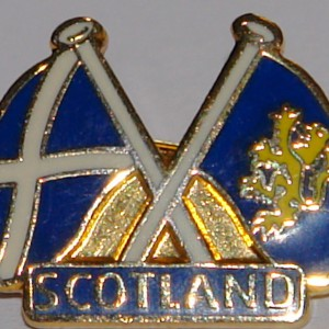 small blue twin flag badge