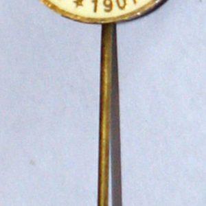 fenerbache pin